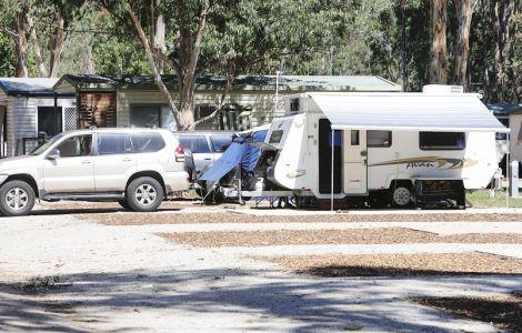 Dog Friendly Caravan Parks Moama