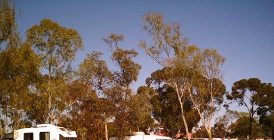 Kalgoorlie Caravan Park  Western Australia