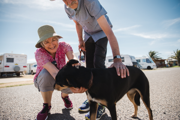 pet friendly | Discovery Parks