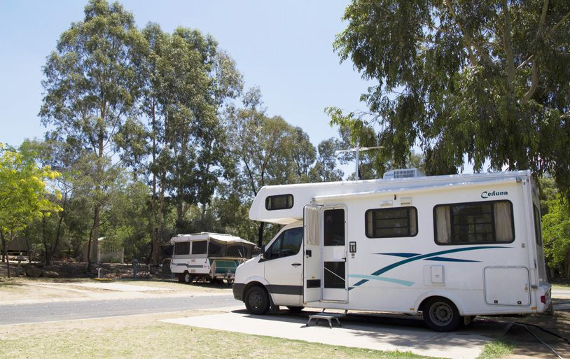 Dog Friendly Caravan Parks Dubbo