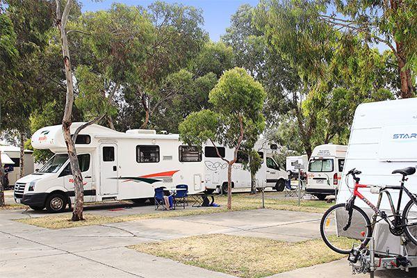 Dog Friendly Caravan Parks Great Ocean Road Victoria